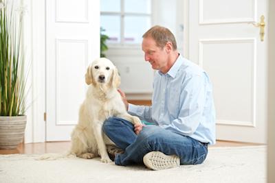 Vom Handeln zur bedeutungsvollen Szene - Blog / Institut für Hundegestützte Psychotherapie (IHPt)